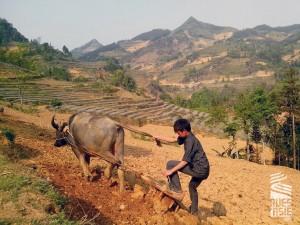 Bac-Ha-voyage-a-moto-au-vietnam-36