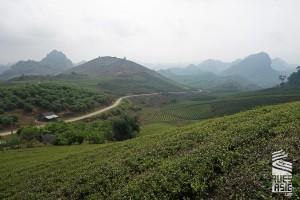 Moc Chau, voyage à moto dans les plateaux du nord-ouest Vietnam et Dien Bien Phu
