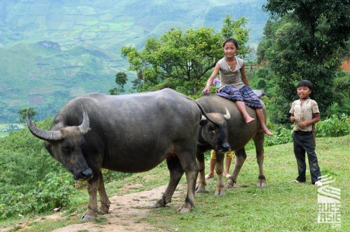 Mu-Cang-Chai-voyage-a-moto-en-petit-groupe-au-vietnam-25