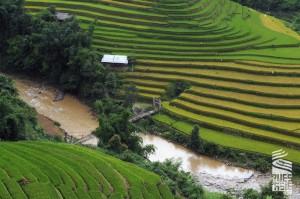 Mu-Cang-Chai-voyage-a-moto-en-petit-groupe-au-vietnam-27