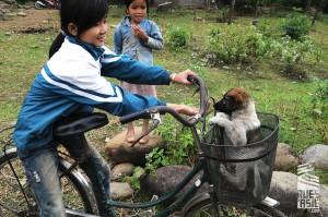 Nghia-Lo-voyage-a-moto-en-petit-groupe-au-vietnam-36