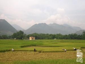 Ngoc-Son-voyage-a-moto-au-vietnam-15