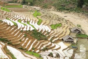Sapa-voyage-a-moto-en-petit-groupe-au-vietnam-40
