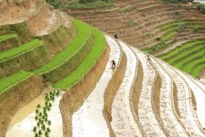 Sapa-voyage-a-moto-en-petit-groupe-au-vietnam-42