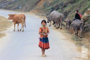 Hagiang-voyage-a-moto-au-vietnam-24