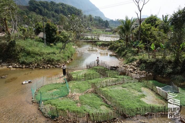 voyage moto à Pu Luong dans les montagnes du nord Vietnam