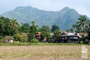 Pu-Luong-voyage-a-moto-au-vietnam