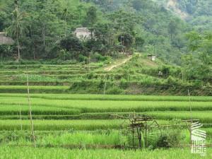 Pu-Luong-voyage-a-moto-au-vietnam-19
